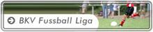 fussball-liga